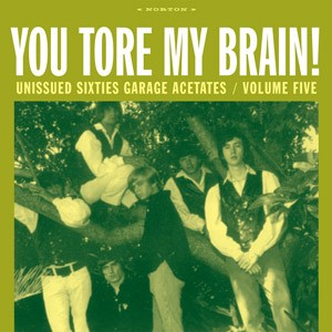 VARIOUS ARTISTS 'You Tore My Brain! Unissued Sixties Garage Acetates V 5' LP