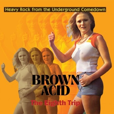 "VARIOUS ARTISTS ""Brown Acid - The Eighth Trip"" LP"