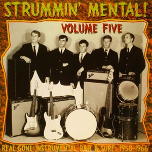 "VARIOUS ARTISTS ""Strummin' Mental Vol. 5"" LP"