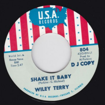 """WILEY TERRY/ MISS ANN LITTLES """"Shake It Baby / I Will Be Got Dog"""" 7"""""""