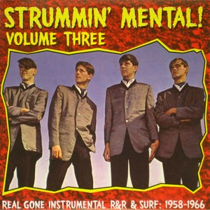 Various - Strummin' Mental! Volume Five!