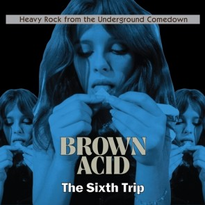 "VARIOUS ARTISTS ""Brown Acid: The Sixth Trip"" (RED vinyl) LP"