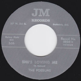"THE POSSUMS ""She's Loving Me/ King Of His World"" 7"""