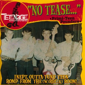 "VARIOUS ARTISTS ""Teenage Shutdown - Vol. 12 No Tease"" CD"