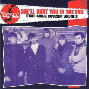 "VARIOUS ARTISTS ""Teenage Shutdown-Vol. 8 She'll Hurt You In The End"" CD"