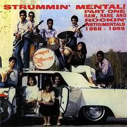 """VARIOUS ARTISTS """"Strummin' Mental Vol. 1"""" CD"""