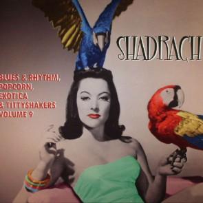 """SPOONFUL EXOTIC BLUES & RHYTHM """"Volume 9: Shadrach"""" 10"""""""