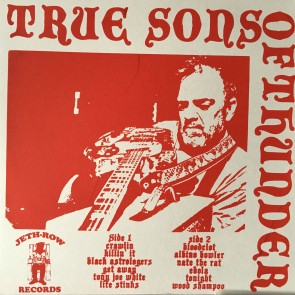 "TRUE SONS OF THUNDER ""Spoonful Of Seedy Dudes"" LP (Repress)"