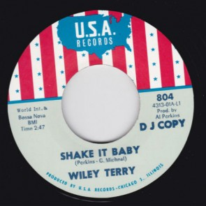 "WILEY TERRY/ MISS ANN LITTLES ""Shake It Baby / I Will Be Got Dog"" 7"""
