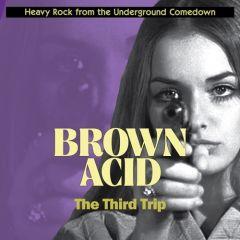 "VARIOUS ARTISTS ""Brown Acid: The Third Trip"""