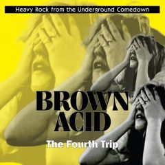 """VARIOUS ARTISTS """"Brown Acid: The Fourth Trip"""""""