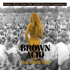 "VARIOUS ARTISTS ""Brown Acid - The Tenth Trip"" LP"