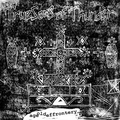 """TRUE SONS OF THUNDER """"Age Old Effrontery"""" 7""""  (Black & White cover)"""