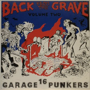 """VARIOUS ARTISTS """"Back From The Grave Vol. 2"""" LP"""