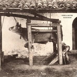 PIERRE & BASTIEN - Musique Grecque LP