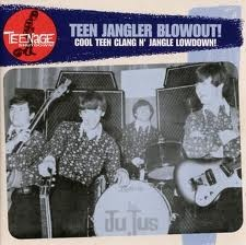 VARIOUS ARTISTS 'Teenage Shutdown-Vol. 9 Teen Jangler Blowout!' LP