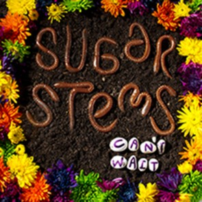 Sugar Stems - Can't Wait LP