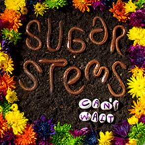 Sugar Stems - Can't Wait LP